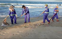 Gần 2 tấn cá chết dạt vào bờ biển Đà Nẵng