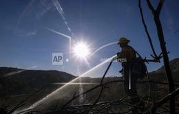Cháy rừng tại California, Mỹ tiếp tục diễn biến phức tạp