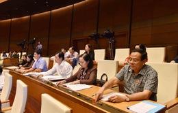 Chiều nay (12/11), Quốc hội sẽ biểu quyết thông qua Hiệp định CPTPP