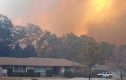 Mỹ: Chưa thể khống chế các đám cháy rừng