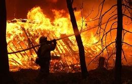 Thiệt hại do cháy rừng ở California lên tới 11,4 tỷ USD