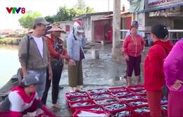 Ngư dân Thừa Thiên Huế được mùa vụ cá Nam