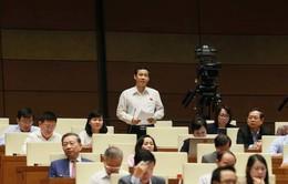 Sáng 14/11, Quốc hội nghe báo cáo về công tác giải quyết khiếu nại, tố cáo năm 2018