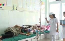 Bệnh sốt xuất huyết có xu hướng gia tăng