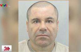 Thắt chặt an ninh ngoài phiên tòa xử trùm ma túy El Chapo