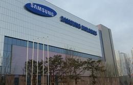 Samsung BioLogics bị ngừng giao dịch cổ phiếu do sai phạm