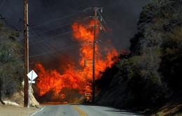 Hơn 1.000 người mất tích do cháy rừng tại California