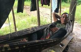 Đắk Lắk: Khó khăn trong phòng chống sốt rét