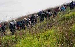 Người di cư đang được đối xử như thế nào ở thị trấn biên giới Mexico?