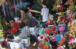 Đà Nẵng: Đa dạng thị trường hoa, quà tặng ngày 20/11