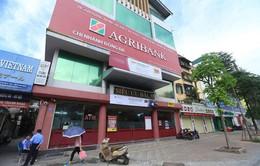 Agribank bán đấu giá hàng loạt nợ xấu