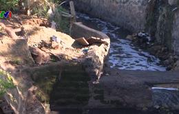 Nguồn nước tại Sơn La ô nhiễm nghiêm trọng do chất thải từ sơ chế cà phê