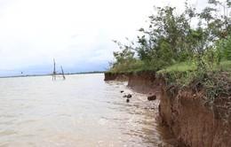 Chậm bố trí vốn nhiều tuyến đê, kè cần tu bổ khẩn cấp ở Quảng Trị