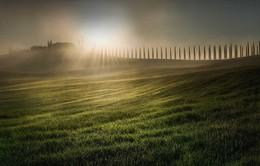 Những bức ảnh đẹp nhất giải thưởng Nhiếp ảnh quốc tế Epson