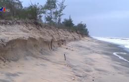Thủ tướng Nguyễn Xuân Phúc yêu cầu tập trung khắc phục sạt lở bờ biển