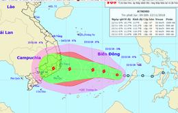 Phú Yên kiểm tra vùng xung yếu trước bão số 9