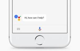 Người dùng đã có thể sử dụng Google Assistant trên iPhone
