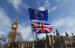 Anh và EU thống nhất dự thảo về quan hệ thương mại