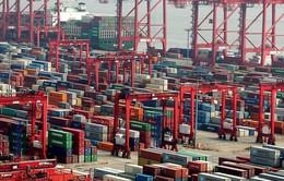 Chiến tranh thương mại: Ảnh hưởng lên doanh nghiệp Việt bắt đầu rõ nét