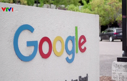 Google ban hành chính sách quảng cáo mới trước thềm bầu cử Nghị viện châu Âu