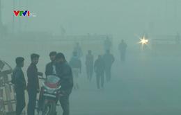 Lượng CO2 trong khí quyển tăng cao kỷ lục