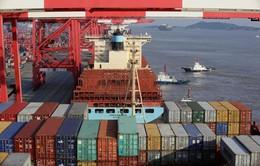 Thương mại thế giới mất gần 500 tỷ USD do hạn chế nhập khẩu