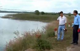 Bà Rịa - Vũng Tàu: Nguy cơ ô nhiễm nguồn nước từ các trang trại chăn nuôi