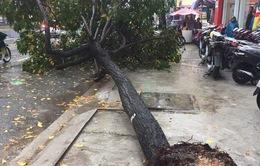 TP.HCM ngập diện rộng, 1 người thiệt mạng do ảnh hưởng bão