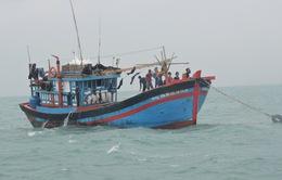 Phú Yên: Ảnh hưởng bão số 9, tàu cá của ngư dân bị đánh chìm
