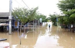 Ninh Thuận: Sơ tán khoảng 39.000 người dân khỏi vùng lũ
