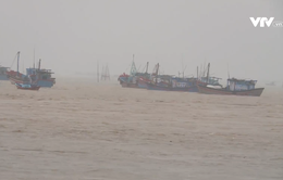 Phú Yên mưa lớn gây ngập tại phía Bắc