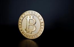Bitcoin lao dốc, chọc thủng đáy 4.000 USD