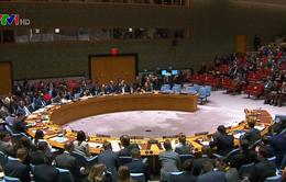 Liên Hợp Quốc họp khẩn vì căng thẳng giữa Nga và Ukraine