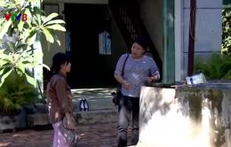 Phú Yên: Người dân nhanh chóng ổn định cuộc sống sau bão lũ
