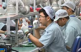 Dấu ấn Việt trong chuỗi cung ứng toàn cầu