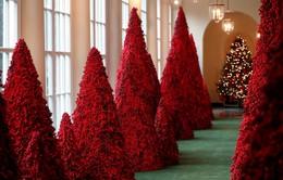 Khung cảnh Giáng sinh ở Nhà Trắng năm nay sẽ thế nào?