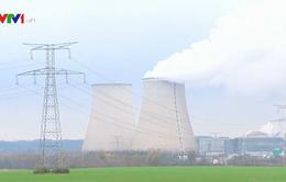 Pháp sẽ giảm dần phụ thuộc vào điện hạt nhân