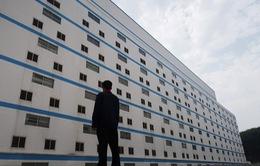 Bên trong khách sạn cao 7 tầng ở Trung Quốc chuyên để... chăn lợn