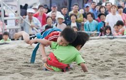 Môn đấu vật Ssrieum của hai miền Triều Tiên là Di sản văn hóa thế giới