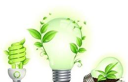 Bạn có biết tuổi thọ của đèn LED là bao lâu?
