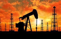 Nguyên nhân nào làm nên phiên bán tháo của giá dầu WTI?