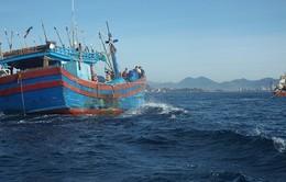 Hai vợ chồng gặp nạn khi đi đánh bắt cá trên biển