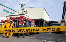 Rò rỉ khí độc tại nhà máy ở Hàn Quốc, ít nhất 4 công nhân hôn mê