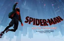 Trải nghiệm sớm siêu phẩm Spider-Man: Into the Spider-Verse theo phong cách AR