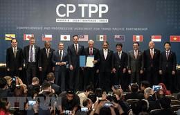 Hiệp định CPTPP được kích hoạt: Việt Nam đã sẵn sàng như thế nào?