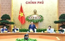Thủ tướng Nguyễn Xuân Phúc: Chính phủ quyết tâm khắc phục tồn tại