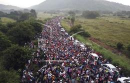 Mexico tận dụng nguồn nhân lực từ dòng người di cư