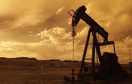 Nga sẵn sàng cùng Saudi Arabia cắt giảm sản lượng khai thác dầu