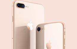 Vì sao người dùng nên mua iPhone 8 và 8 Plus bản tân trang?