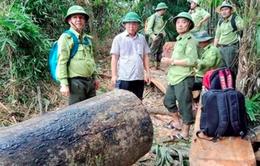Xử lý nghiêm đối tượng chống người thi hành công vụ trong công tác quản lý rừng